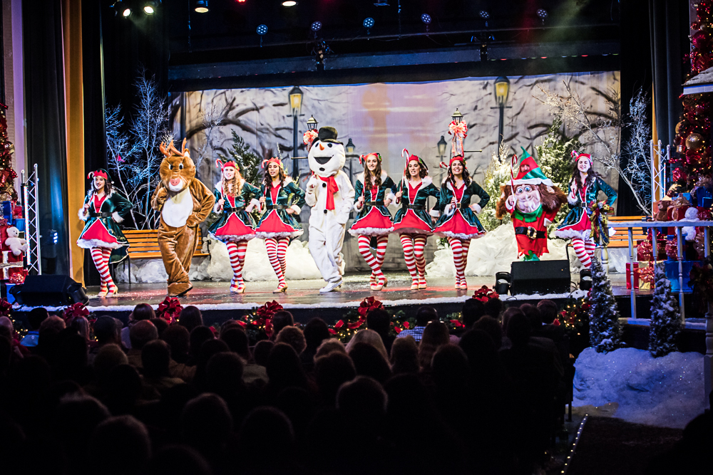 Southern Christmas Show 2020.2019 Annual A Robeson County Christmas Show Carolina Civic Center